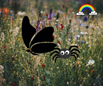 copertina farfallina nera